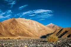 River Bed, Nubra valley