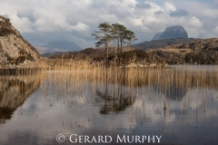 Reflections-Suilven