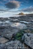 Bamburgh Castle Rocks (Portrait)