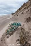 Beach Debris (Portrait)