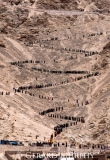 Buddha's Birthday Procession, Leh Ladakh