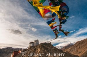 Prayer-Flags-Maitreya-Flags-Leh.jpg