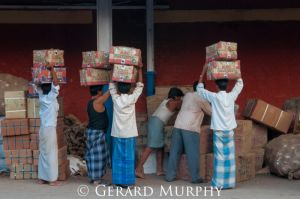 Porters, Kolkata