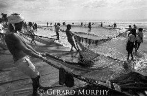 Hauling Nets, Goa