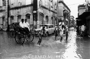 Rickshaws in the Flood, Kolkata