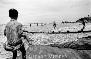 Windfall Fisherboy, Goa