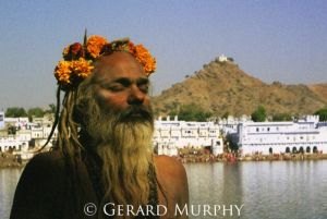 Crowned Sadhu, Pushkar