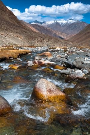 Mountain Stream, Ladakh
