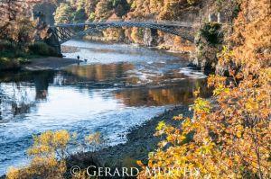 Autumn, River Spey, Craigellachie